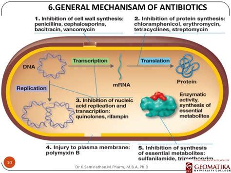 antibiotic cell wall inhibitors