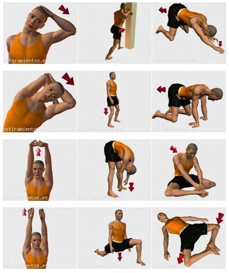 nudo muscular espalda el deporte es salud