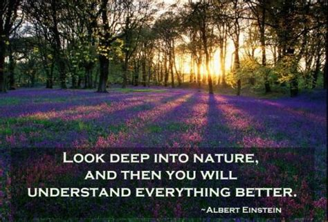 by design a search to understand you better books look into nature and then you ll understand
