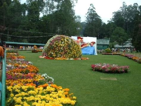 Garden Coimbatore Ooty Botanical Garden Picture Of Botanical Gardens Ooty