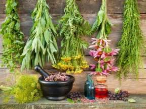 herb garden plants 12 healing herbs you need to grow in your medicinal garden