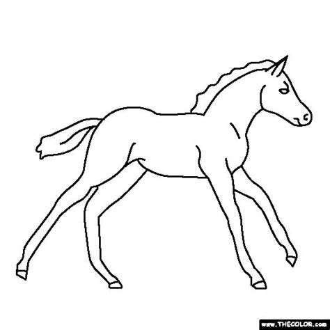 coloring pictures of baby horses baby horse coloring page pony coloring coloring pages