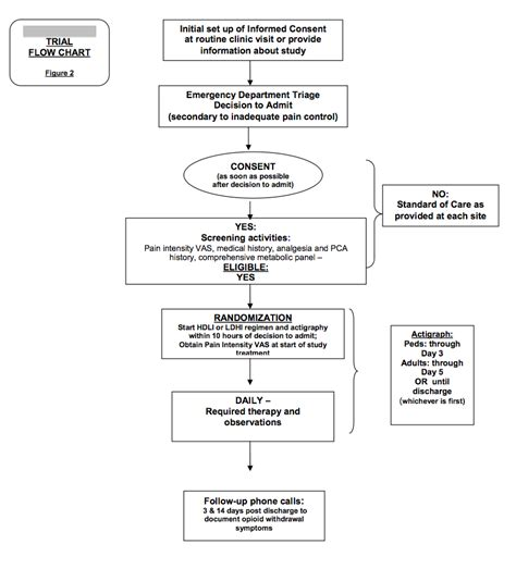 Sle Case Study In Clinical Psychology Clinical Trial Flow Chart Template