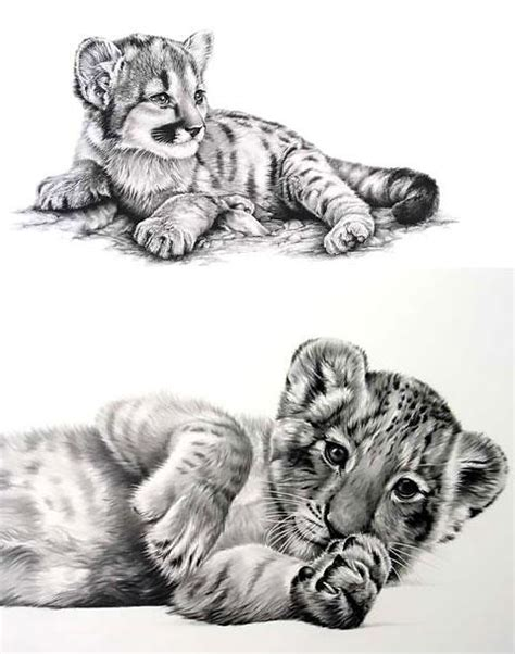 baby tiger tattoo designs baby tiger design
