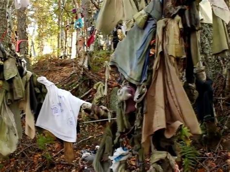 kain jarik pohon yang aneh di skotlandia ikat pohon pakai kain minta kesehatan