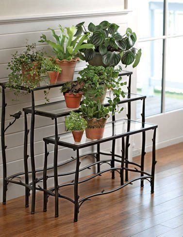 how to arrange indoor plants 32 best images about indoor plant stands on pinterest