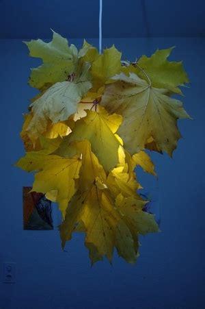 gold leaf l shade black gold lshade obsession black lshade gold