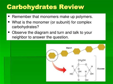 carbohydrates review ppt unit 2 biological molecules what are the