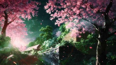 gif wallpaper of nature sakura hana falling spring manga anime pinterest