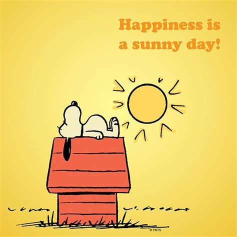 Happiness Is Meme - happiness is a sunny day peanuts shareables pinterest
