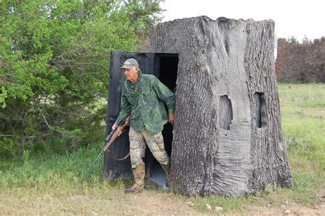 nature blinds imitate a tree stump stump unsuspecting