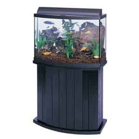 Solid Wood Aquarium Cabinets by 25 Best Ideas About Aquarium Cabinet On Fish