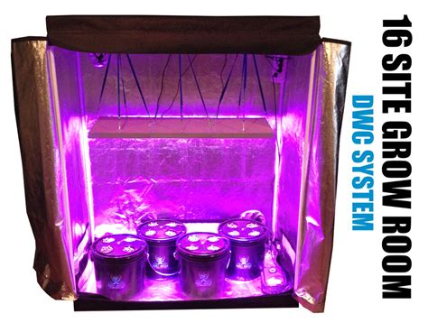 site hydroponic system grow room complete grow tent