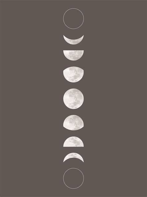 moon phase the nest free printable moon phase and pattern