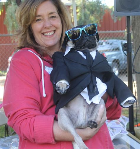 pug dress up trick or treats local pugs dress up in costume lodinews news