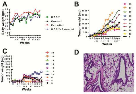 Metabolites Free Full Text Global Metabolomics Reveals