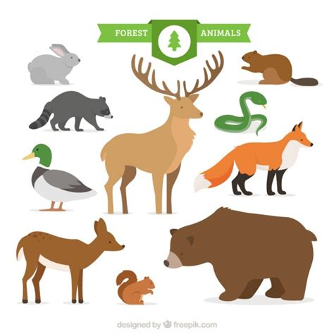 doodle animals vector free forest animal collection vector free