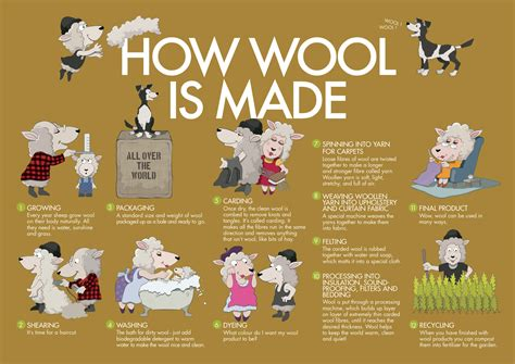 how is how wool is made wool in schools