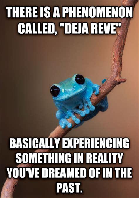 Fact Frog Meme - livememe com small fact frog