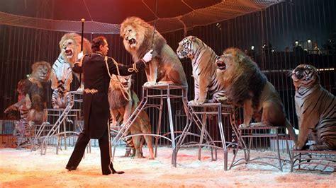 el domador de leones 8416087407 los 6 trabajos m 225 s peligrosos del mundo
