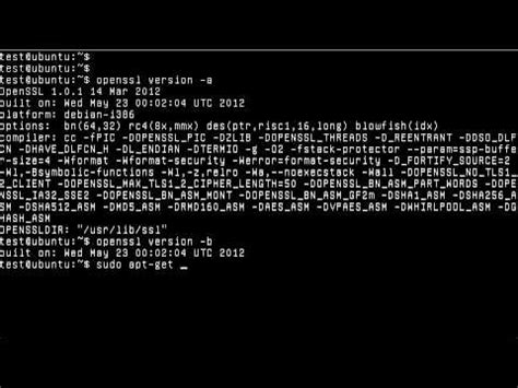 heartbleed tutorial hack hack ssl doovi