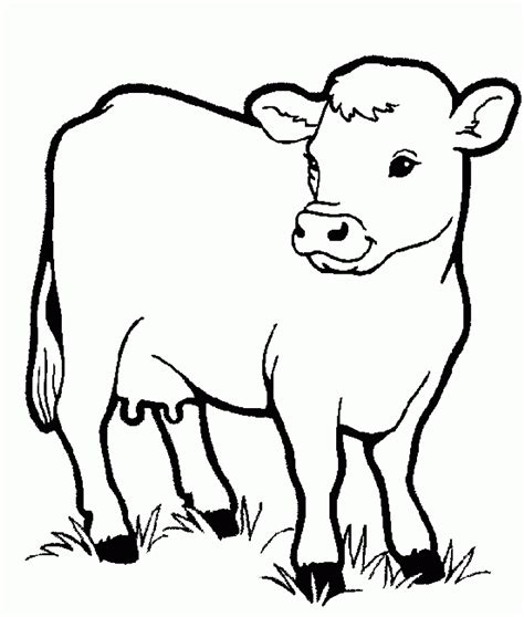 preschool cow coloring page download little cow preschool coloring pages farm animals
