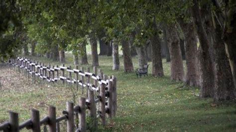 recinzione giardino economica come scegliere la recinzione pi 249 appropriata al tuo