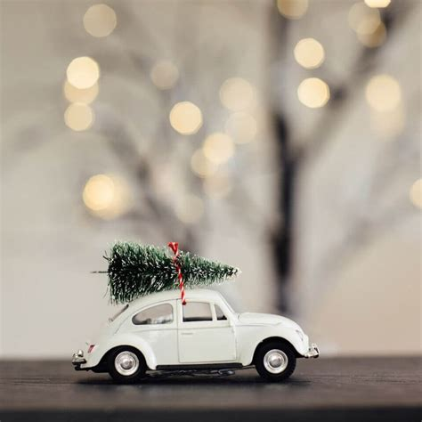 car with tree image car decoration