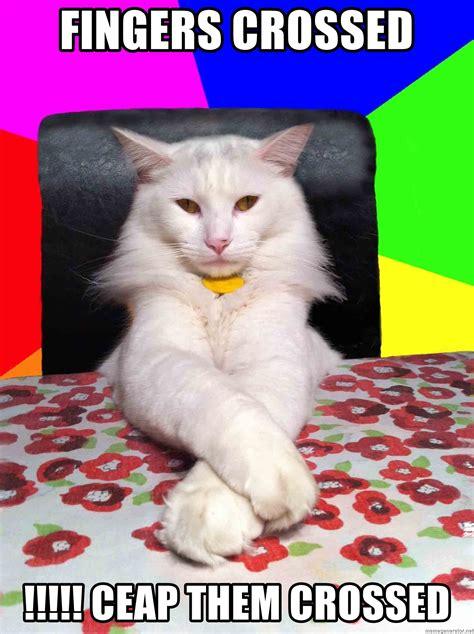 Fingers Crossed Meme - fingers crossed ceap them crossed evil cat bonbon