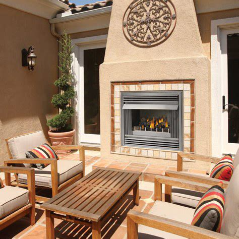 outdoor fireplace inserts gas napoleon riverside 36 in outdoor gas fireplace insert gss36