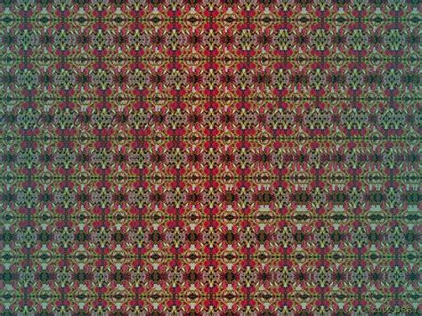 cuadros en 3d ocultos estereogramas descubr 237 la imagen oculta 3d im 225 genes en