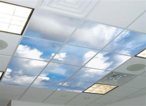 Dolphin Wall Murals 27 ceiling wallpaper design and ideas inspirationseek com