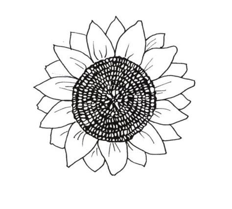 sunny daisy coloring page sunny the sunflower coloring page 85 sunflower coloring