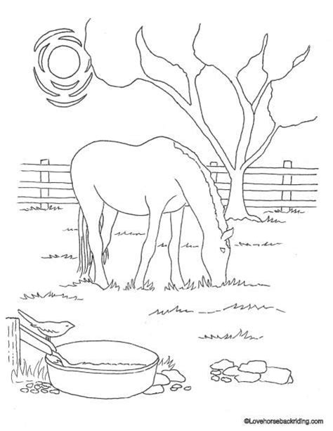 horse coloring pages that you can print printable horse coloring pages for you to enjoy