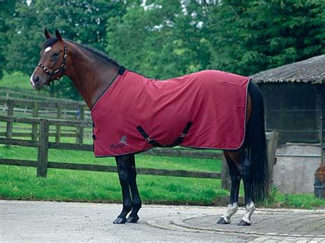 summer rugs for horses masta avante cotton summer sheet the tack shack rugs saddles boots