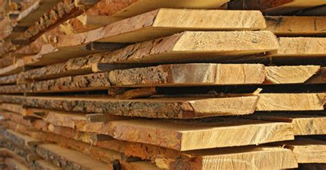 jungle wood cut sizes wood log manufacturer  bhiwandi