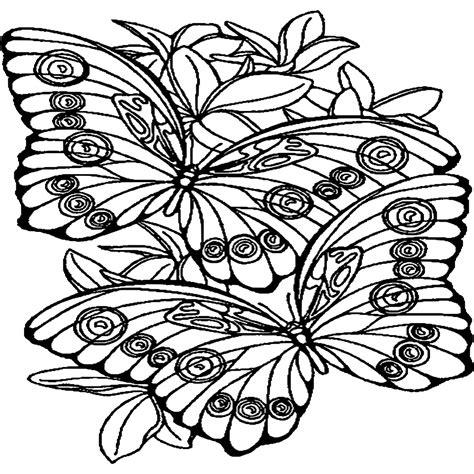 disegni farfalle e fiori farfalle da colorare e stare