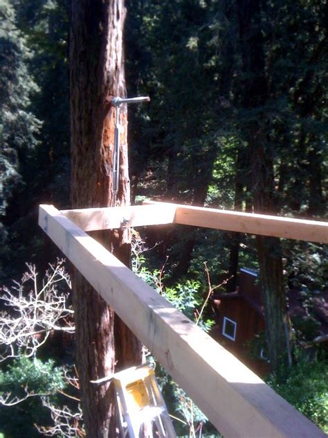 top 28 tree damage to top 28 tree to house foundation nhbc foundations near trees professional