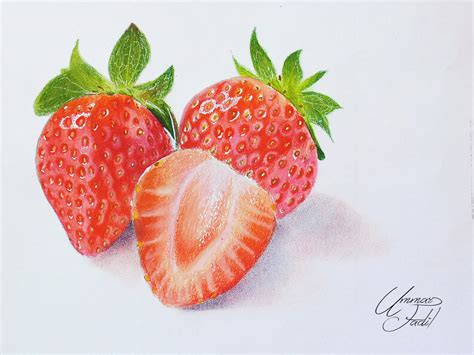 fruit drawings drawing fruits 3 strawberries colored pencils by f a d