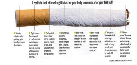 quit smoking benefits men how to small penis region 10 ccdc lung