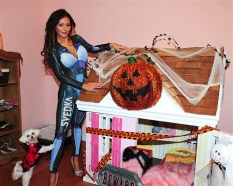 jwoww house would you spoil your pet with these splurges most extravagant pet products
