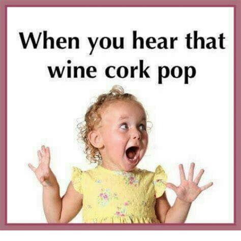 memes  pop  wine pop  wine memes