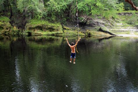 rope swings in florida rope swing suwannee river twin rivers state forest