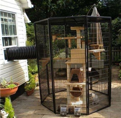 outside cages outdoor cat enclosures home design garden architecture magazine