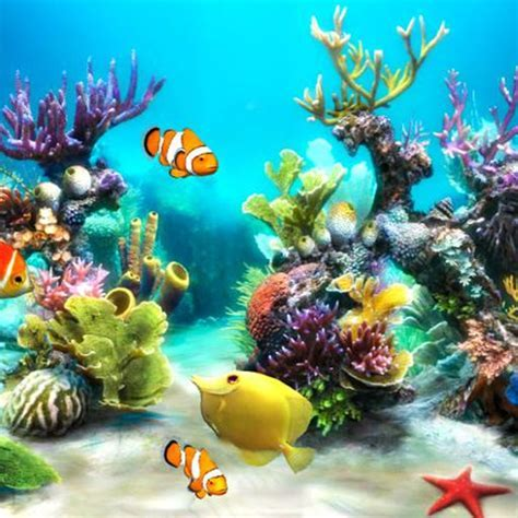 Free Live Aquarium HD Wallpapers   Backgrounds Par