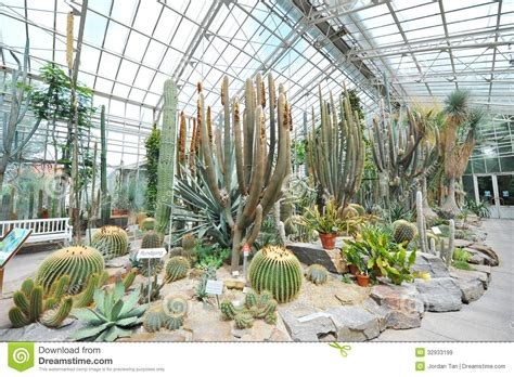 Botanical Garden Plants Large Cacti Exhibiting Drought Tolerant Plants In Munich Botanical Garden Royalty Free