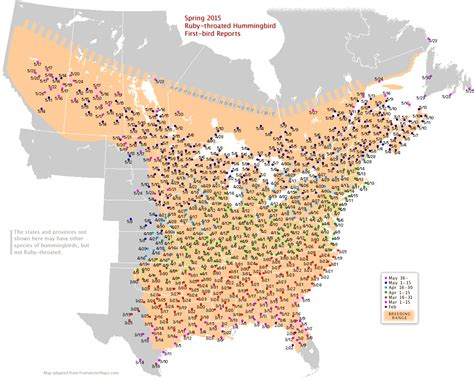 migration map 2015 hummingbird migration maps