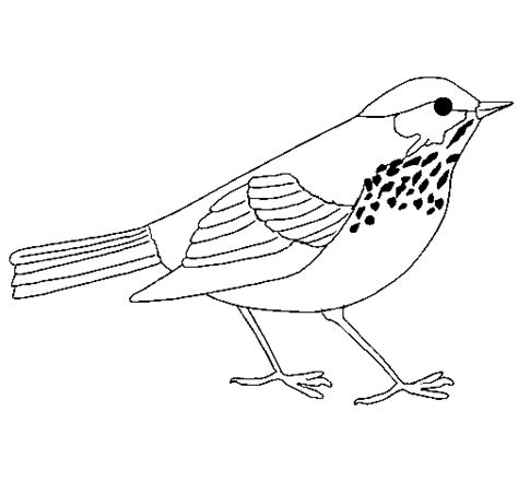 free coloring pages of quetzal color
