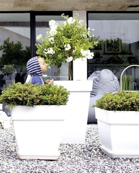 vasi di plastica i migliori vasi per il tuo giardino in resina o plastica