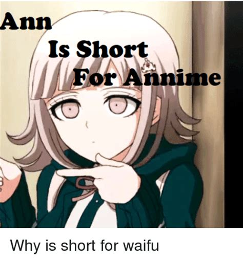 What Is A Me Me - ann is short for annime dank meme on me me
